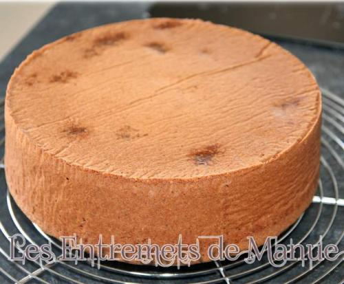 Molly-cake-thermomix